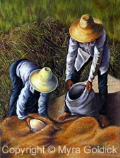 The Harvest - Oil Painting by Myra Goldick