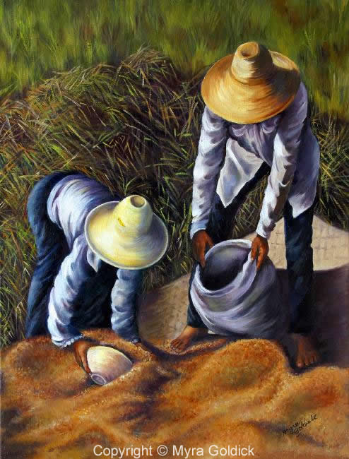 Harvest by Myra Goldick